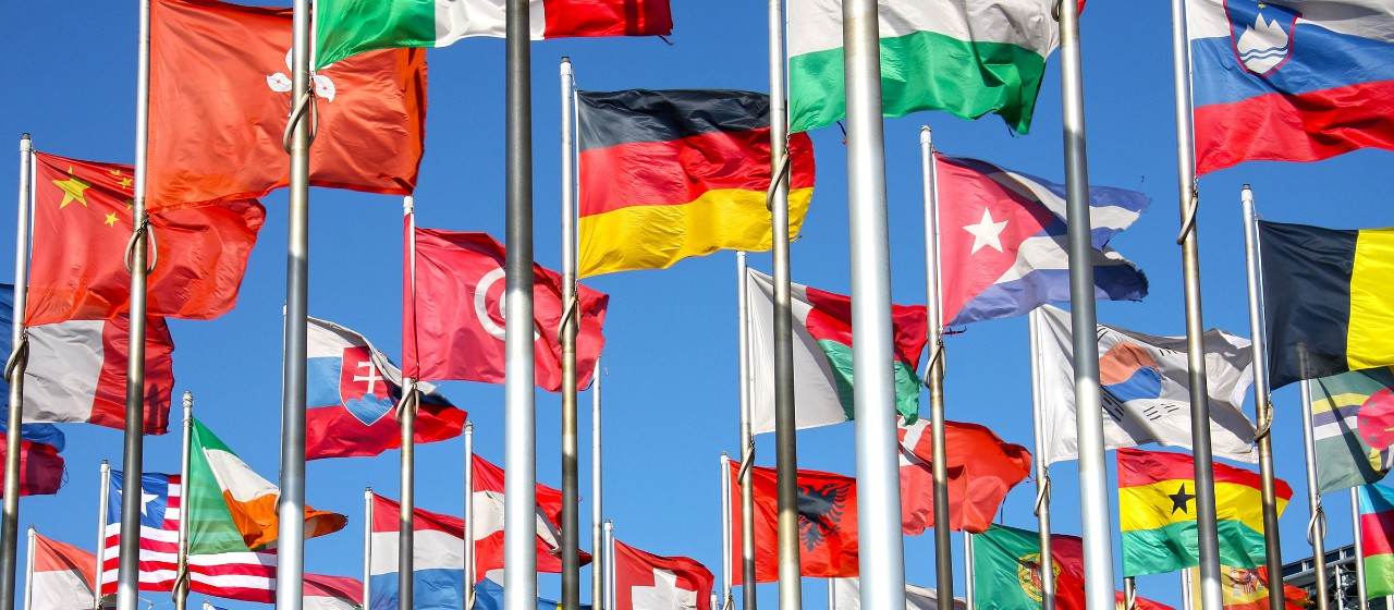 Frau mit Flaggen